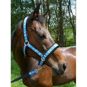 оглавник за коне